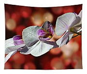 Orchid Flower Photographic Art Tapestry