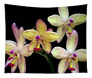 Orchid In Blossom Tapestry