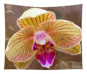 Orchid On Marble Tapestry