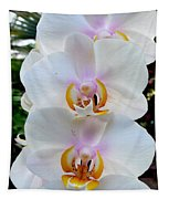 Orchid Series 7 Tapestry