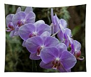 Orchids Square Format Img 5437 Tapestry