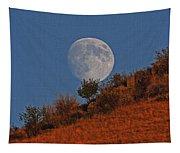 Oregon Moon Tapestry
