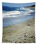 Ormond Beach Tapestry