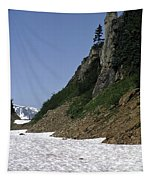 Orphaned Snow Field Tapestry