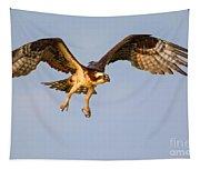 Osprey In Flight Tapestry