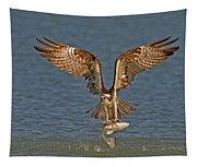 Osprey Morning Catch Tapestry