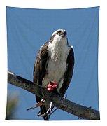 Osprey Sushi Tapestry