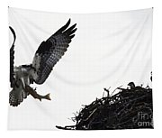 Osprey With Sushi Tapestry