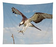 Osprey With Talons Extended Tapestry