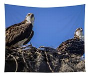 Ospreys In The Nest Tapestry