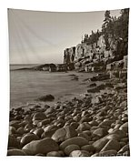 Otter Cliffs Black And White Tapestry