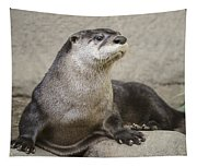 Otter North American  Tapestry