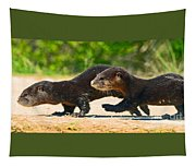 Otters Crossing The Road  Tapestry