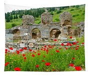 Our Entry Into Ephesus And Its Baths-turkey Tapestry