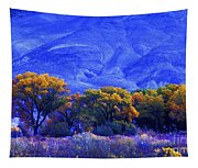 Owens Valley Fall Colors  Tapestry
