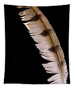 Owl Feather Tapestry
