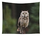 Owl In The Forest Visits Tapestry