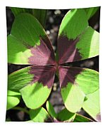 Oxalis Deppei Named Iron Cross Tapestry by J McCombie