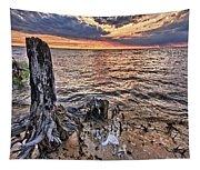 Oyster Bay Stump Sunset Tapestry