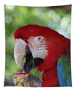 P Is For Parrot Tapestry