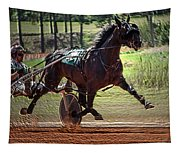Pacer Tapestry