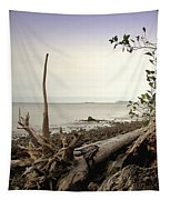 Pacific Vista Tapestry