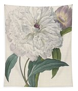 Paeonia Flagrans Peony Tapestry