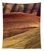 Painted Curves Tapestry