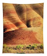 Painted Hills And Grassland Tapestry