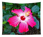 'painted Lady' Hibiscus Tapestry