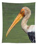 Painted Stork Mycteria Leucocephala Tapestry