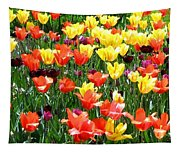 Painted Sunlit Tulips Tapestry