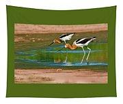 Pair Of American Avocets Tapestry