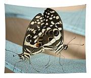 Pair Of Citrus Swallowtail Butterflies  Tapestry