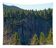 Palisades View Point Tapestry
