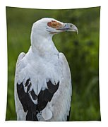 Palm-nut Vulture 2 Tapestry