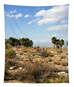 Palm Springs Indian Canyons View  Tapestry