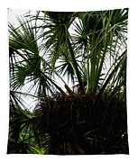Palm Tree In Curacao Tapestry