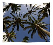Palm Trees 3 Tapestry