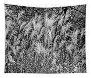Pampas Grass Monochrome Tapestry