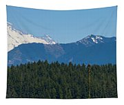 Panoramic Rainier Rt.25 Tapestry