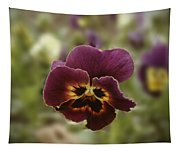 Pansy Beauty Photograph Tapestry