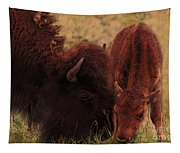 Parent With Newborn Calf Bison Tapestry