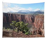 Parker Canyon In The Sierra Ancha Arizona Tapestry