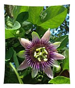 Passion Flower 1 Tapestry