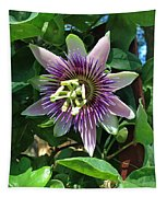 Passion Flower 4 Tapestry