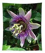 Passion Flower 5 Tapestry