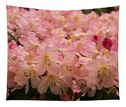 Pastel Coral Azaleas Refreshed By The Rains Tapestry