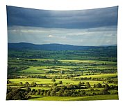Pastoral Fields, Near Clonea, County Tapestry