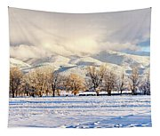 Pasture Land Covered In Snow With Taos Tapestry